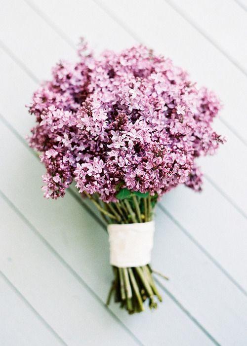 Fleurs Flowers Lilac Bouquet Pretty Flowers