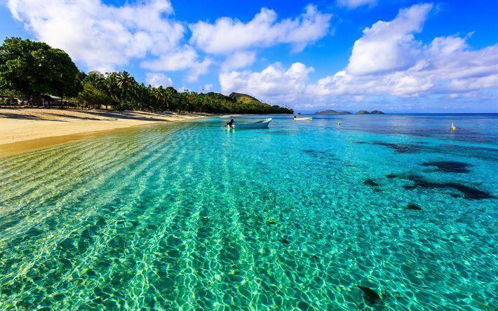 トロピカルアイランド, 海洋, ビーチ, ヤシの木, 夏休み, ボート