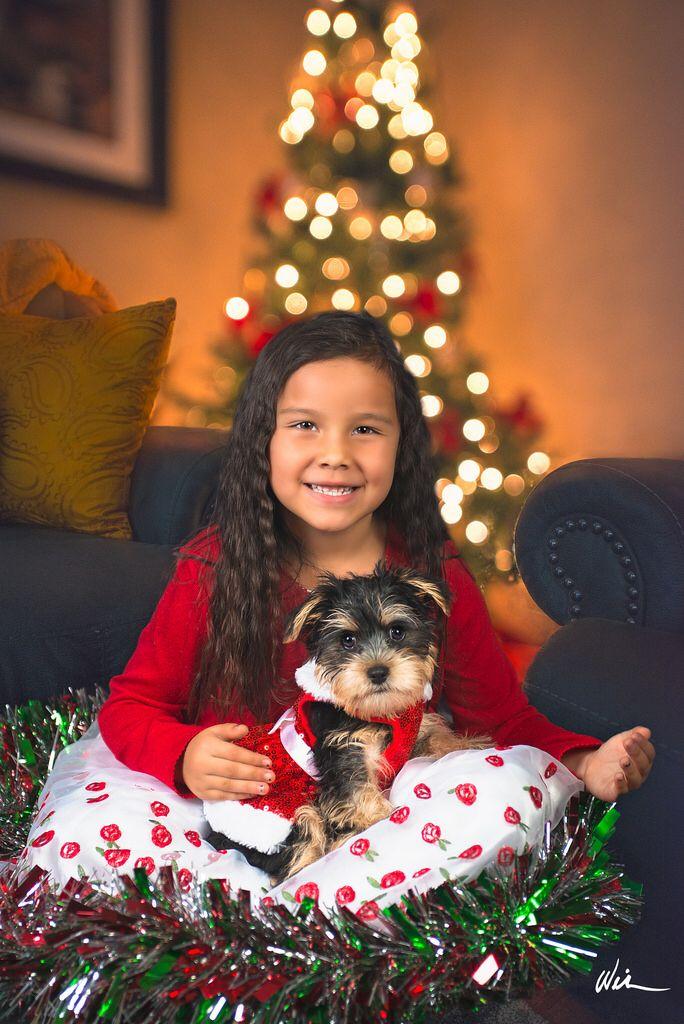 Bella & Pepper's Christmas