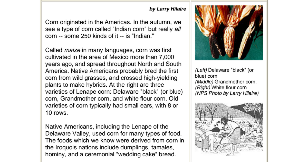 Cmsstgcornpdf native american recipes pinterest native native american men cmsstgcornpdf forumfinder Images