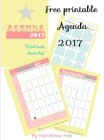 Mad About Pink Free Printable  Agenda  A Format  Paper