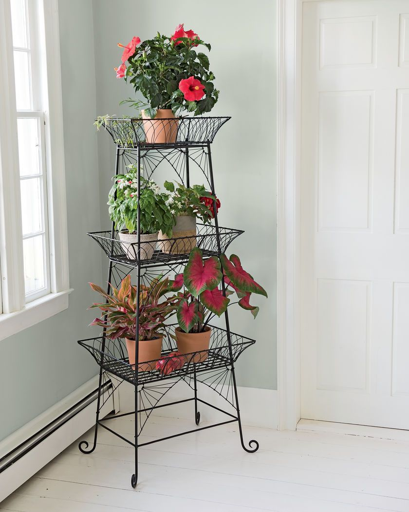 Wire Plant Stand   Bathroom Etagere   Black Metal Plant Stand