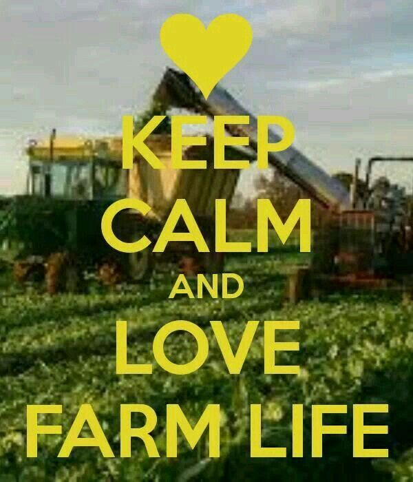 Farm Life Quotes Adorable Pinkristen Zalud On Farm ❤  Pinterest  Farms Living