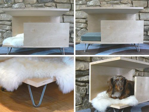 pawsitively modern s indoor dog den swanky for wally treats goodies puppy tails and. Black Bedroom Furniture Sets. Home Design Ideas