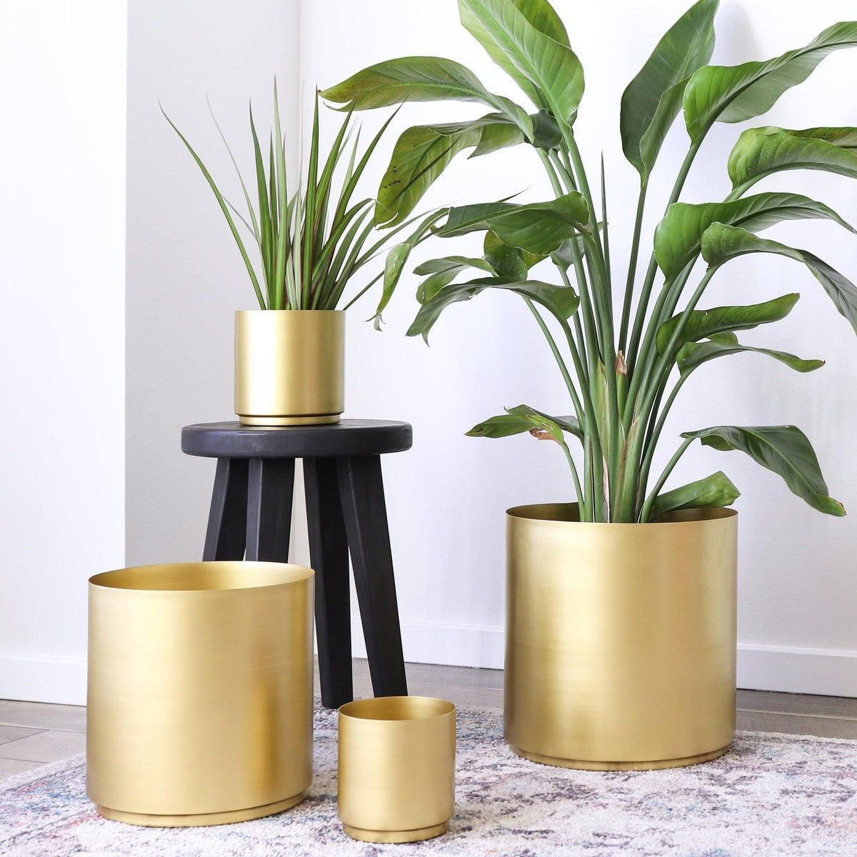 23 Affordable Indoor Planters We Love In 2020 Large Indoor Plants Indoor Plant Pots Large Indoor Planters