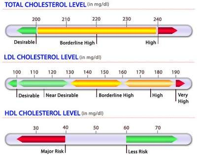 how to raise hdl cholesterol range