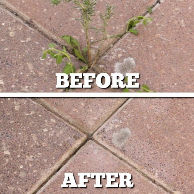 Super Simple Ideas For People Who Hate Yard Work: Pin On Hometalk: Gardening