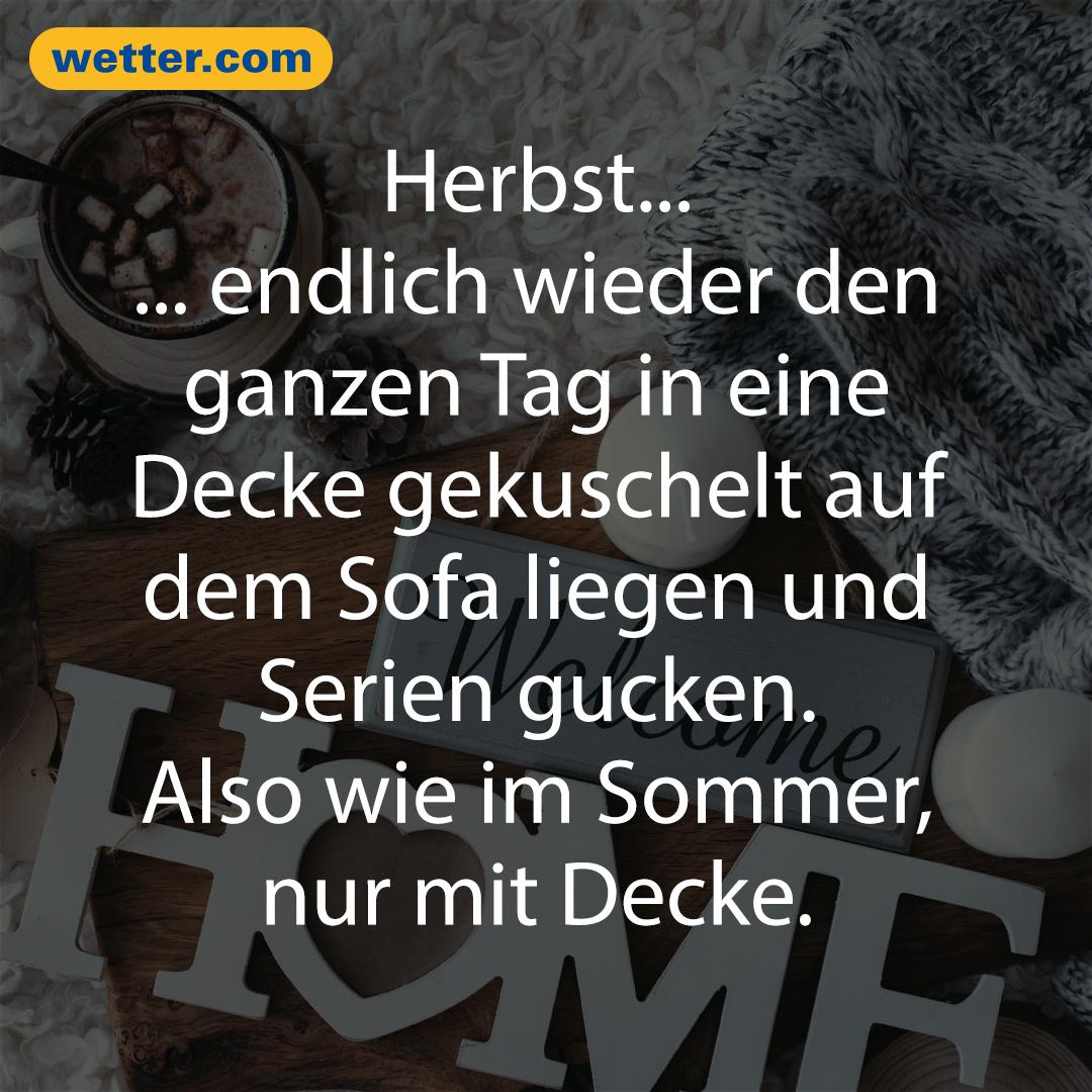 Wetter November 2020 Winterfans Brauchen Noch Geduld Herbst Spruch Urkomische Zitate So Wahr Zitate