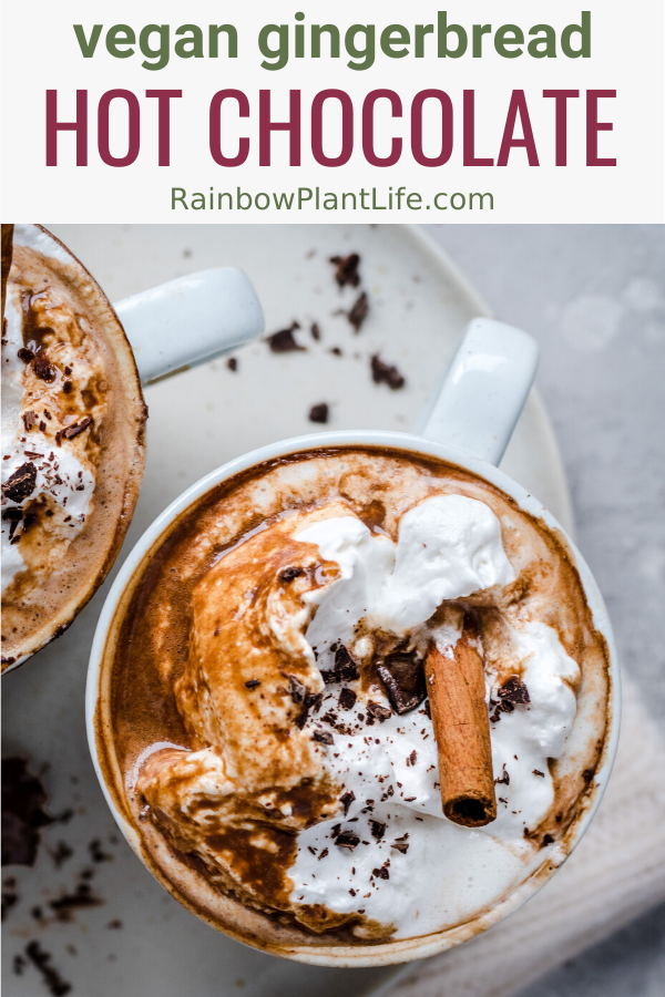 Healthy Vegan Gingerbread Hot Chocolate  — Rainbow Plant Life
