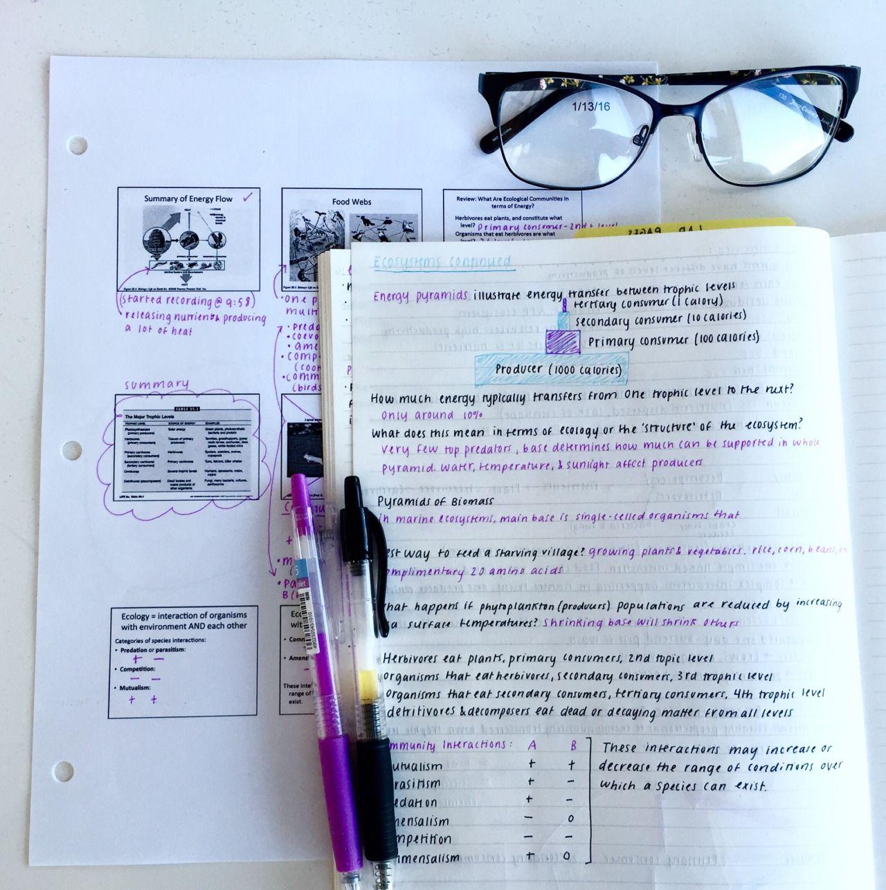 Nycdoe homework help