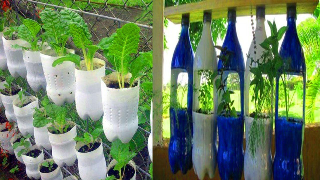 Beautiful Garden ideas Using old plastic Bottles | 2-liter bottle ...