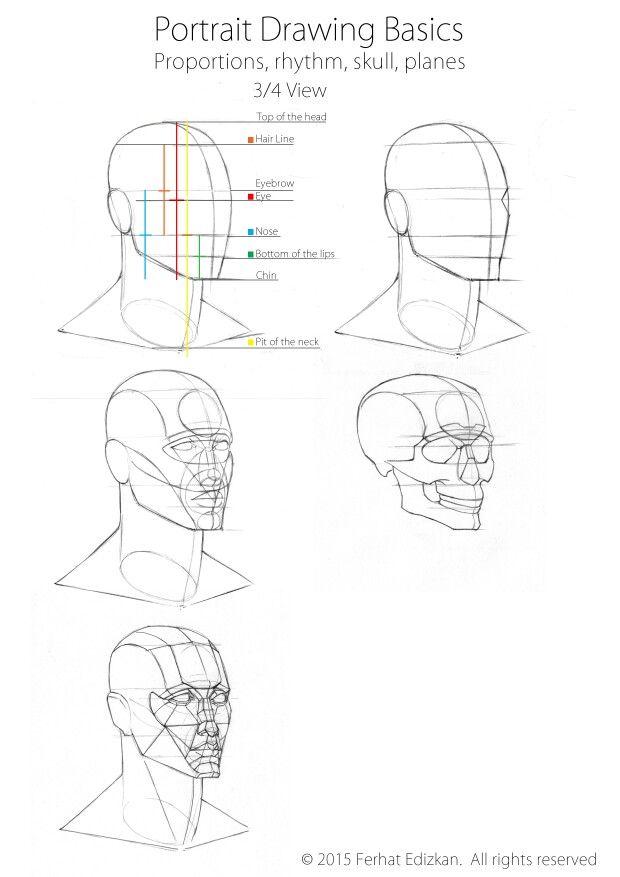 Portrait Drawing Basics Three Quarter View Portrait Drawing Face Drawing Drawing Tutorial Face