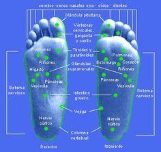 Antes de comenzar la terapia, es conveniente darse un baño de pies (o de manos) con agua caliente. Séquelos suavemente, y luego, frótel...