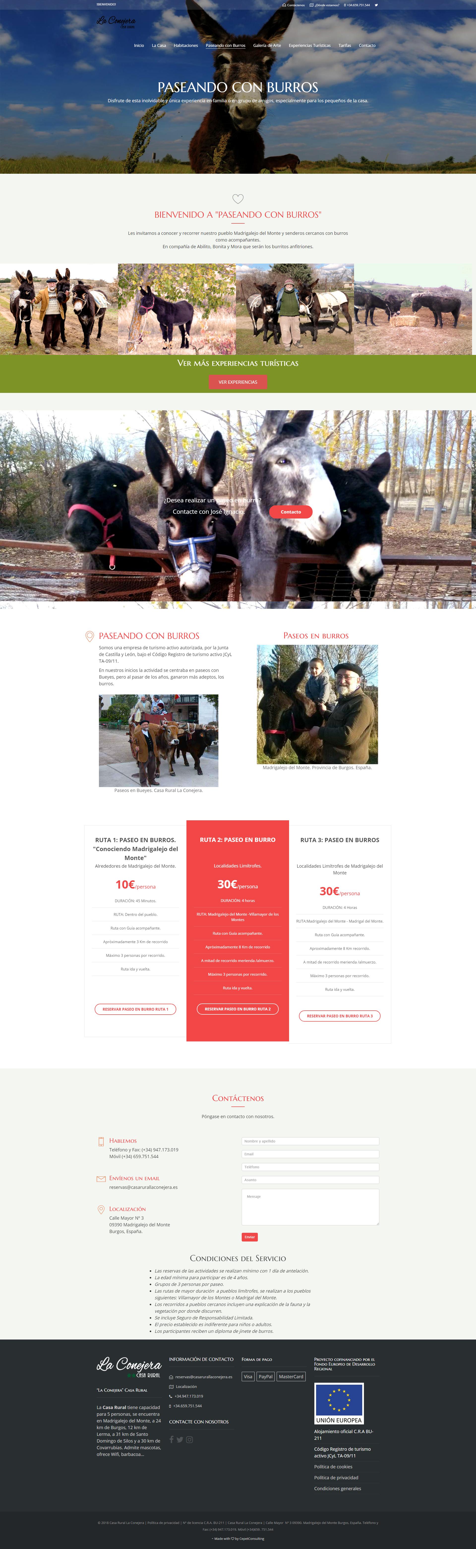 Paseando con burros, turismo rural en Burgos
