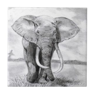 Dibujos De Elefantes A Lapiz Buscar Con Google Dibujos De Elefantes Elefantes Dibujos De Animales
