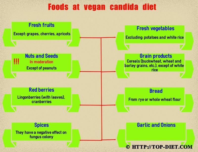 Foods list of vegetarian diet plan against candida | Healthy