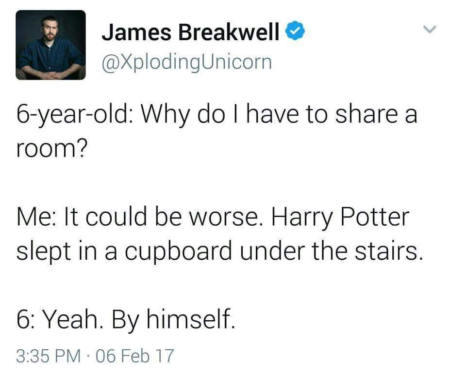 How Would A 6 Year Old Even Know That Harry Potter Lived In The
