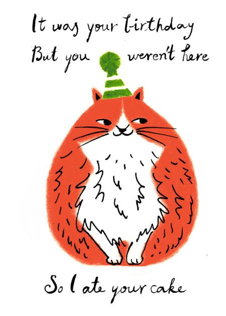 Hui Skipp - Birthday Fat Cat