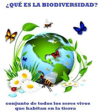 Que Es La Biodiversidad La Biodiversidad Pintura Floral Carteles Creativos