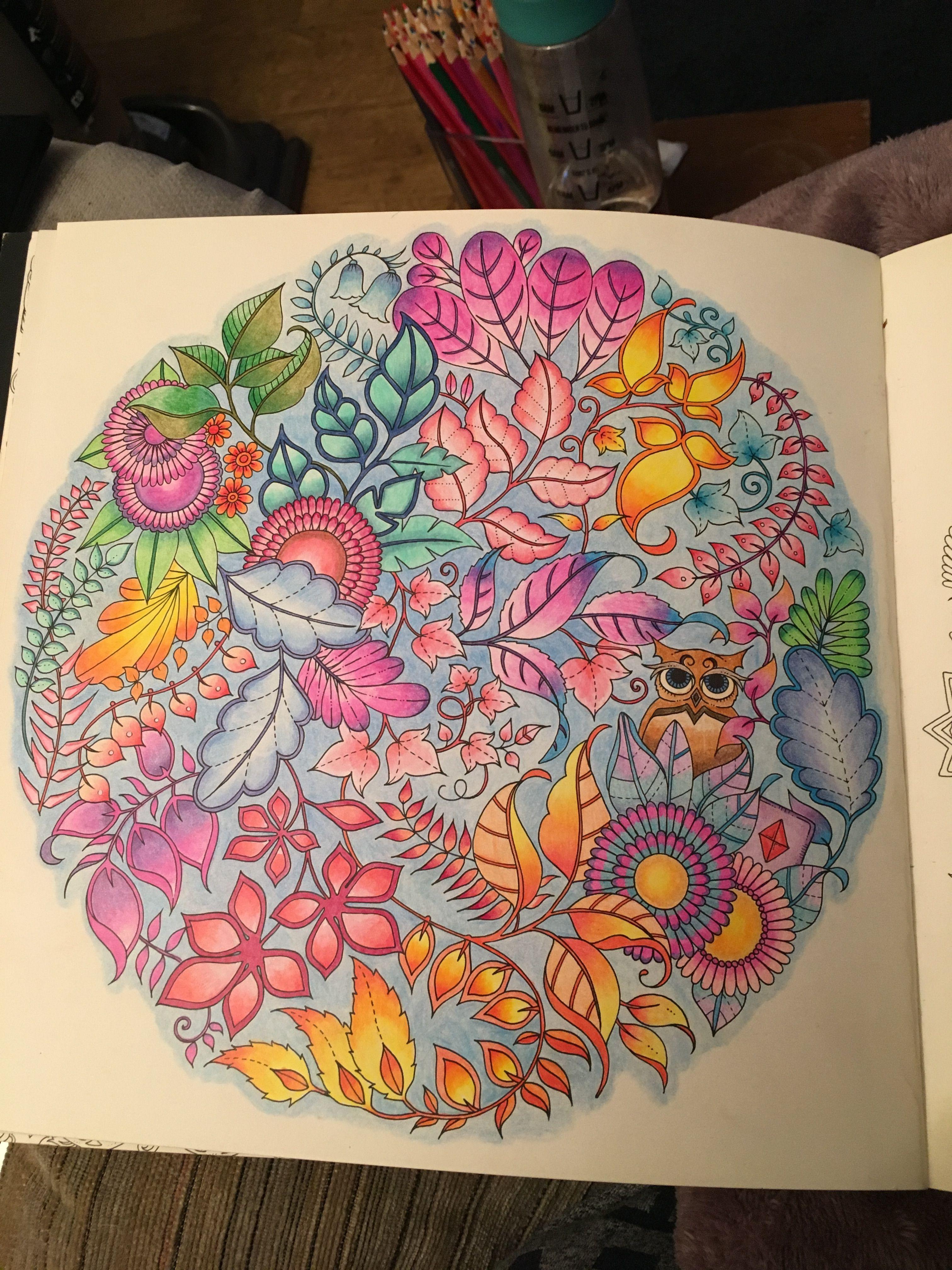 Pencil colouring using Ergosoft pencils #johannabasford enchanted ...