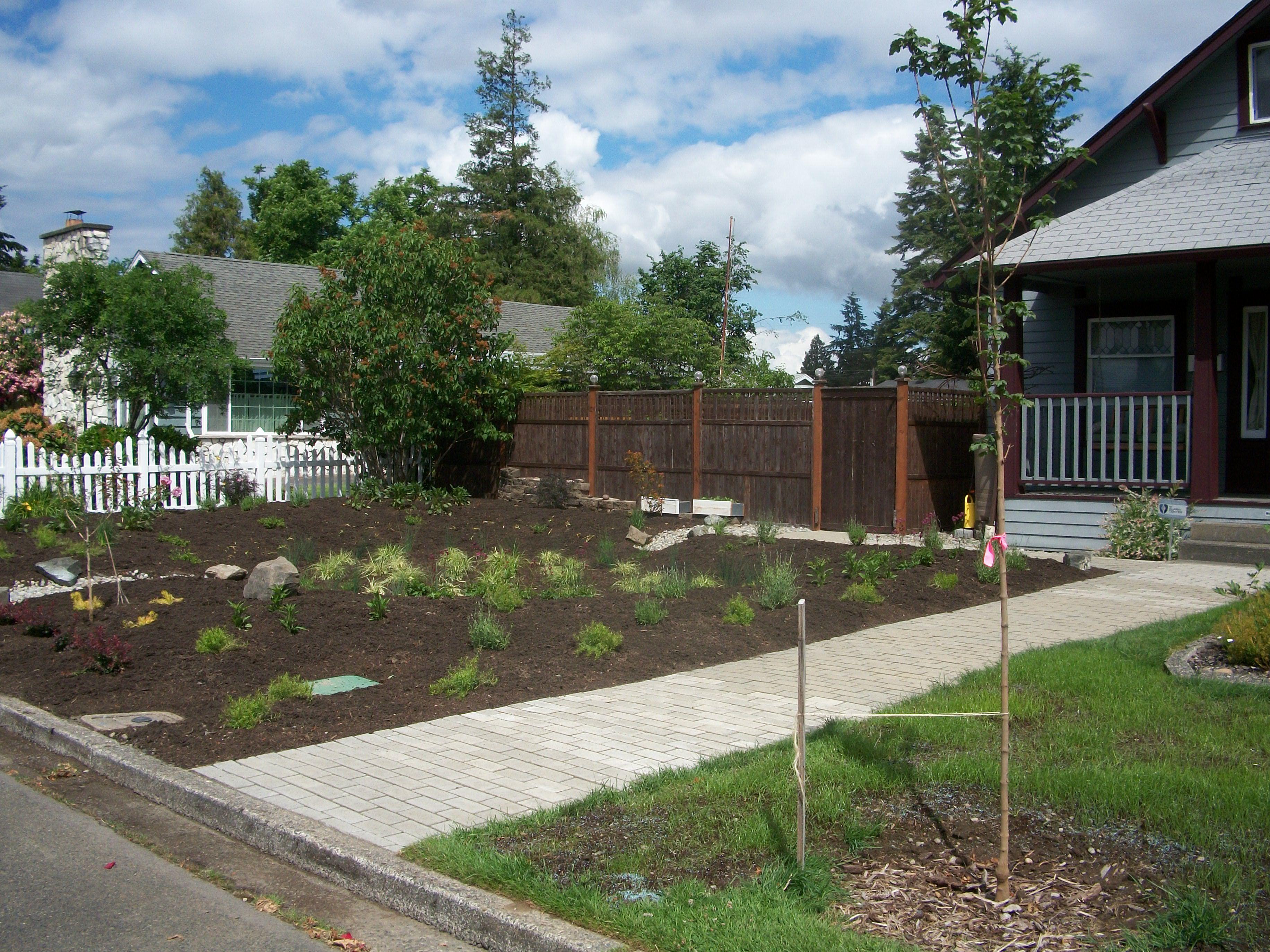 6423e2f93b86126a6c7122e1c77d1b3d - Washington County Master Gardeners Plant Sale