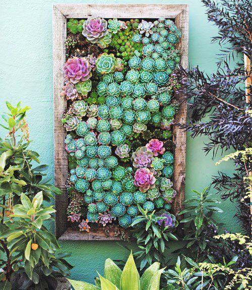 jardin go green pinterest jardins plantes et d co jardin. Black Bedroom Furniture Sets. Home Design Ideas