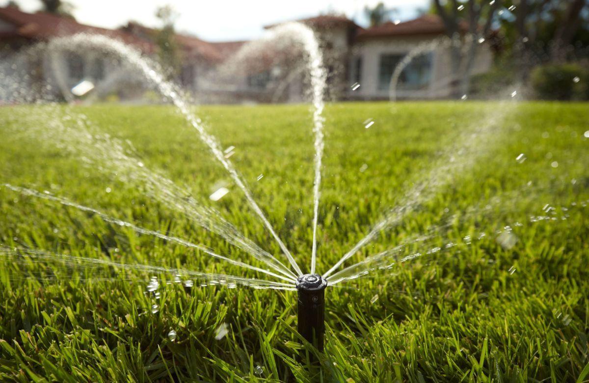 Netro Smart Wifi Sprinkler Controller Review 12 Zones With Images Irrigation Sydney Gardens Landscape Design