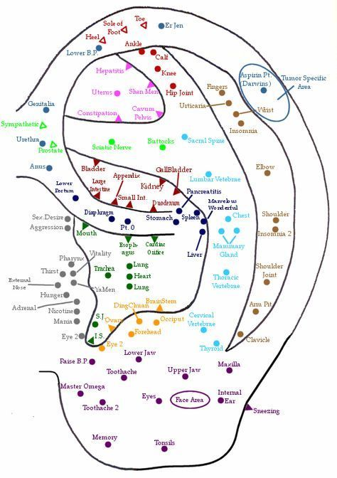 Ear auricular acupuncture points facial pressure for headaches acupressure also maria tash   scale of piercing pain  did my own conch and it rh pinterest