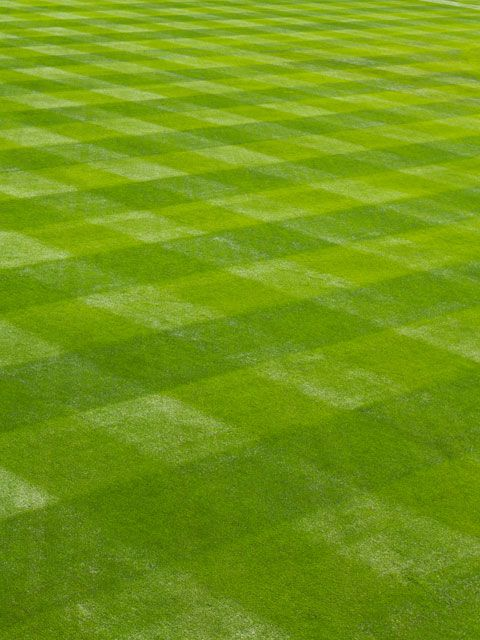 9 Mowing Tips for the Best Lawn on the Block is part of Perfect lawn People - These quick tips will score you a healthier, betterlooking lawn