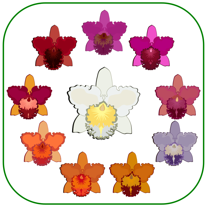 Clipart High Quality Easy To Use Free Support Cattleya Flowers Clip Art