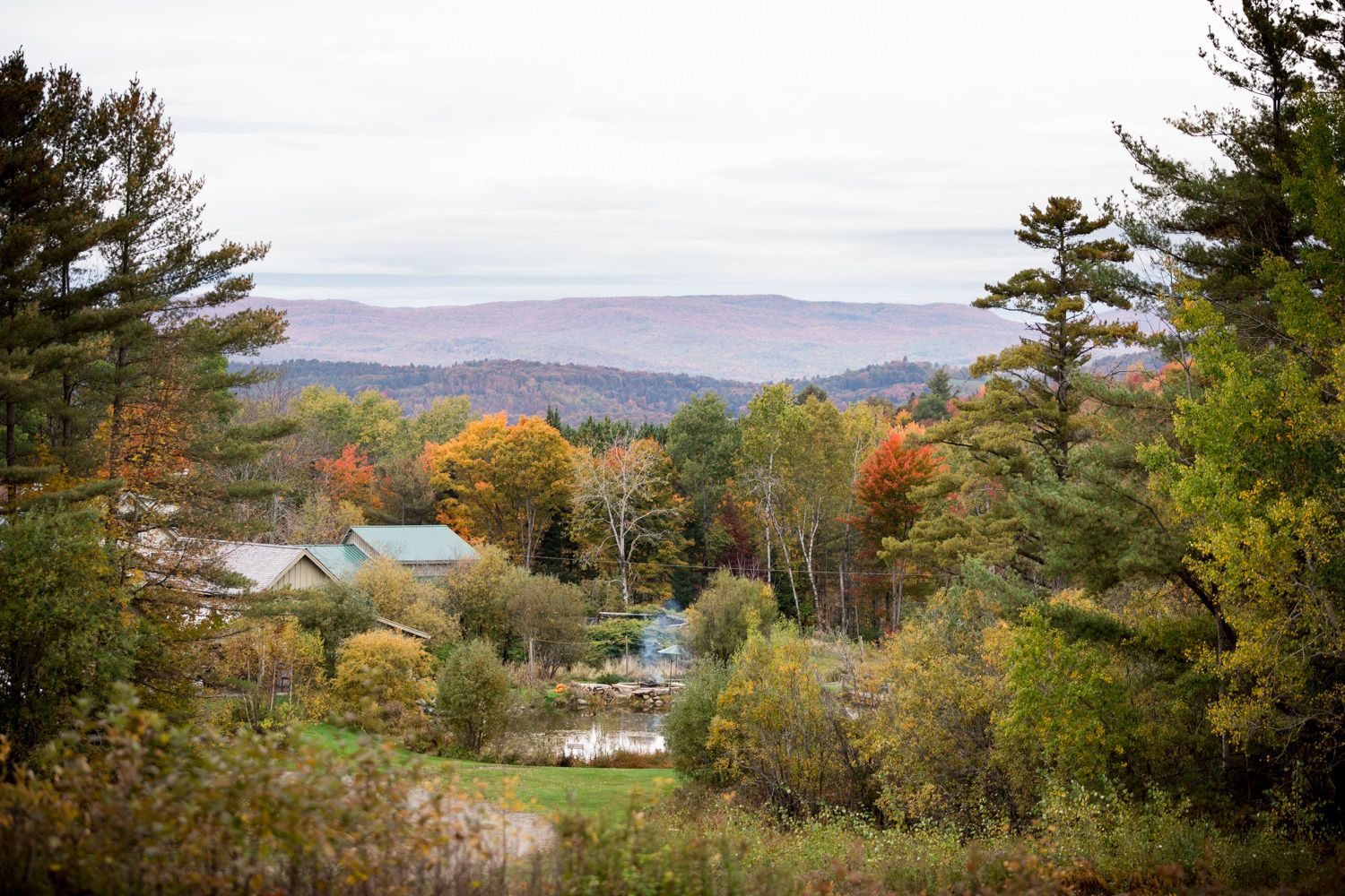 Fall Alerin Barn Wedding (With images) | Vermont wedding ...