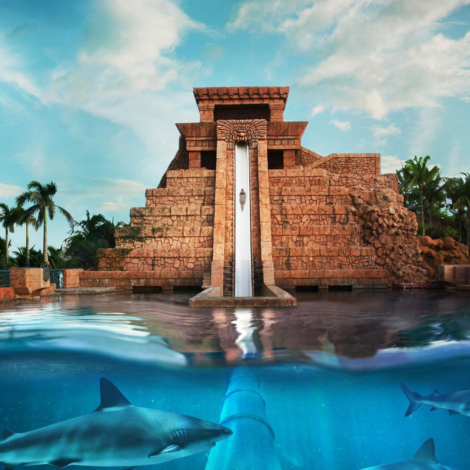 Photos & Videos: Atlantis Resort & Casino Paradise Island