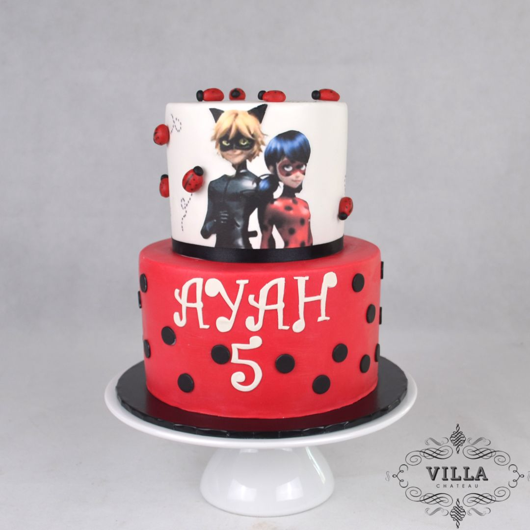 Lady Bug Cat Noir Birthday Cake Cake Cake Decorating Cat Noir Birthday Cake