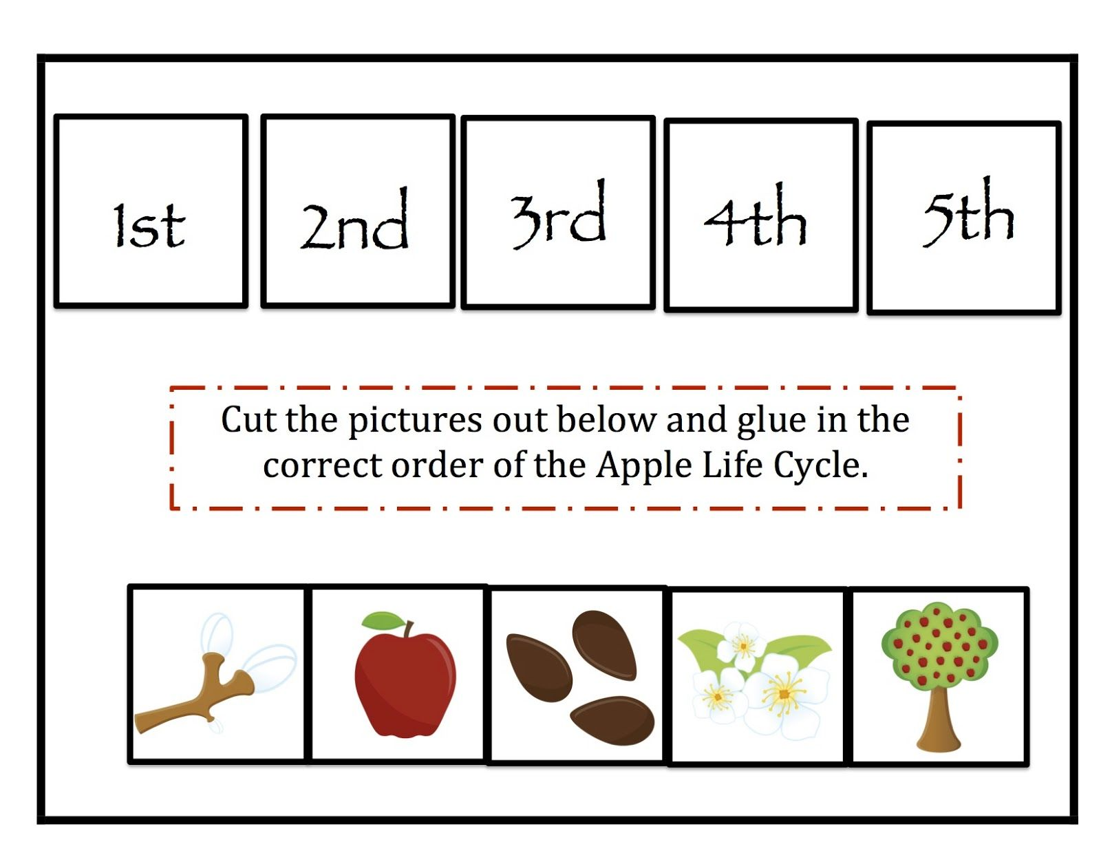 Life Cycle Of A Plant For Kindergarten Worksheet