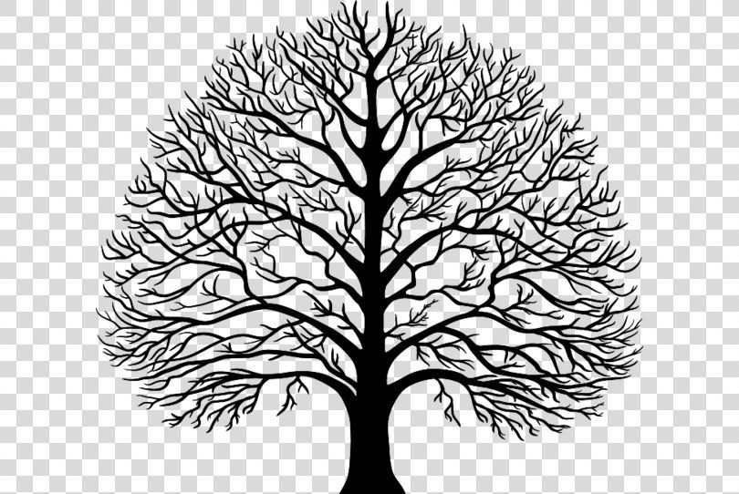 Tree Stencil Tree Png Tree Autocad Dxf Black And White Branch Flower Tree Stencil Black And White Tree Flower Download