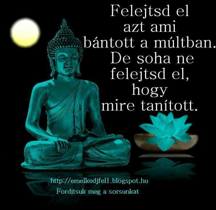paulo coelho születésnapi idézetek Pin by Lilla Bors on Bölcsességek, idézetek   Peace quotes, Inner