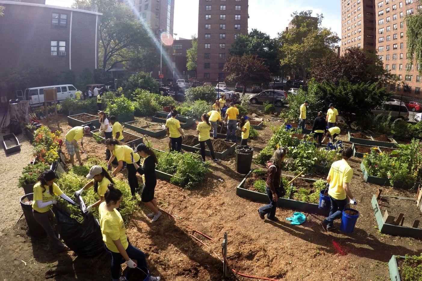 WishGarden Ambassador Julie Walsh shared a picture of GrowNYC\'s El ...