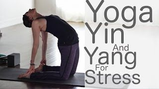 fightmaster yoga  youtube  yoga for stress relief yin