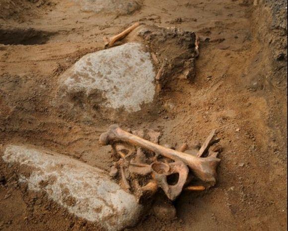 Kun pihamaalta löytyy ruumis, taitaa oppilaiden kinnostus historiaan kohota...