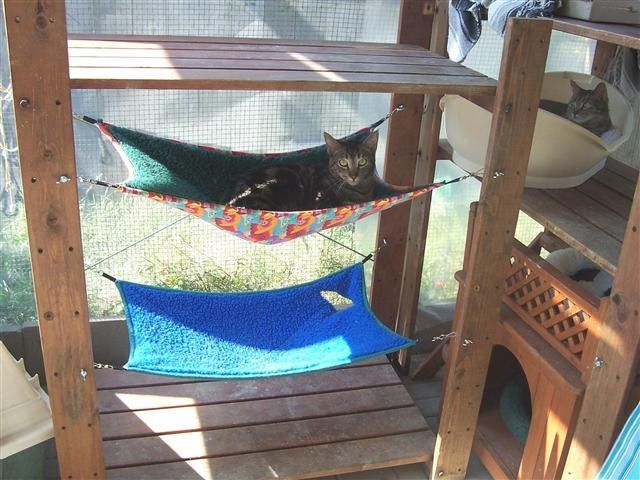 double decker outdoor kitty hammocks with solid frame and shade excellent outdoor cat habitat. Black Bedroom Furniture Sets. Home Design Ideas