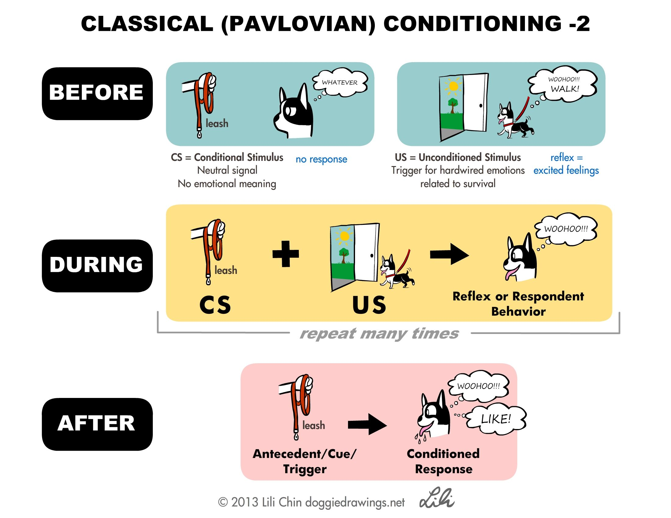 classical and operant conditioning essay