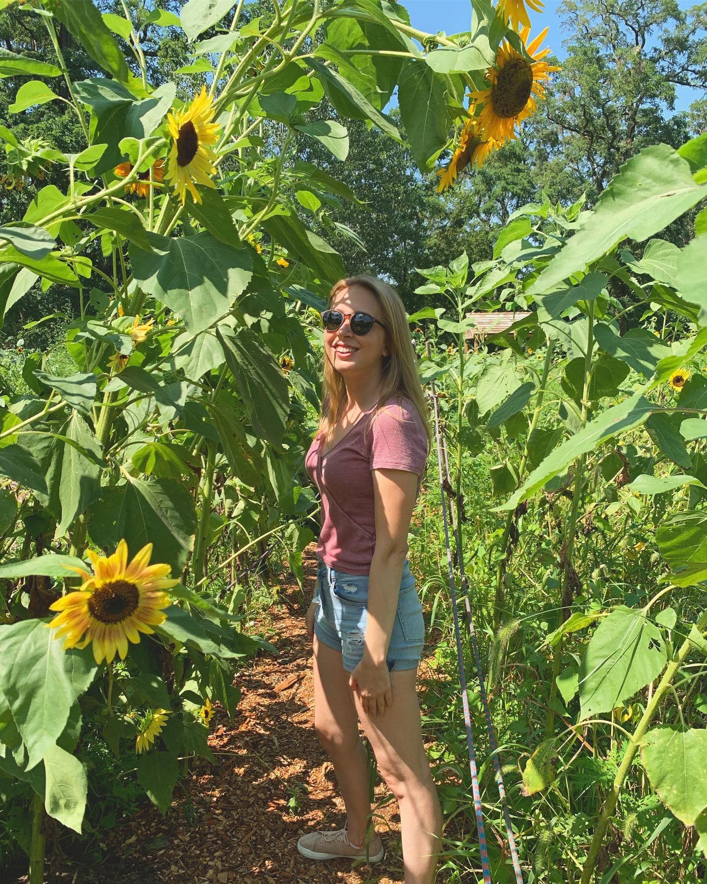 My Secret Summer Vacation Sunflower Field - Home Student