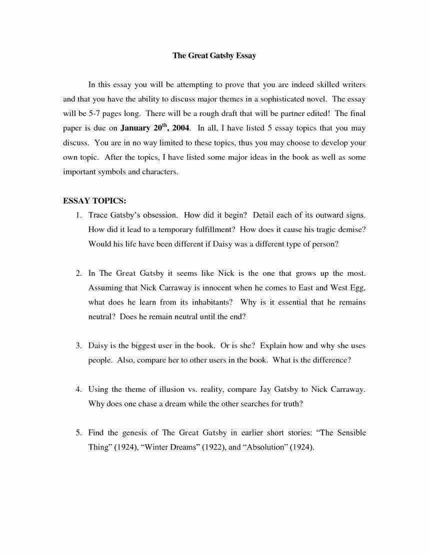 The great gatsby essay help