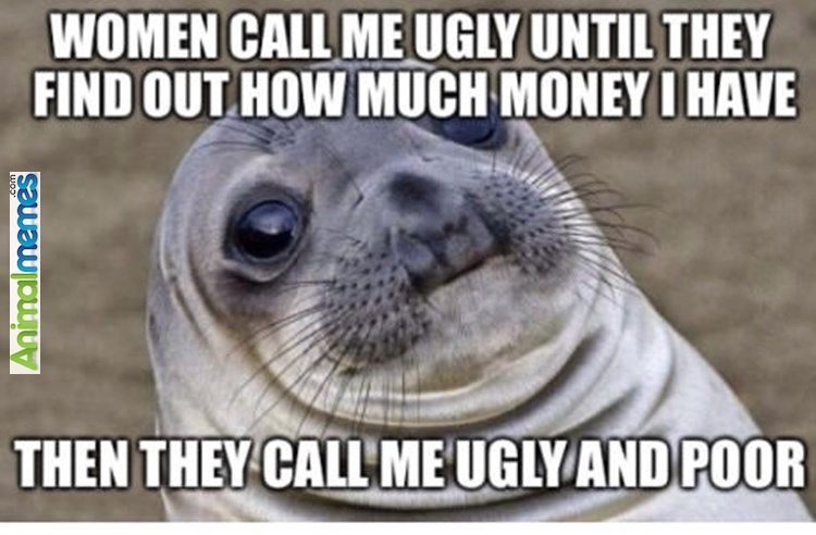 Animal memes Ugly and poor...