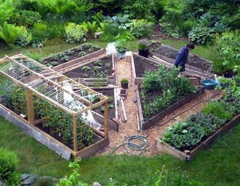 49 Awesome Vegetable Garden Design Ideas Design Vegetable Garden Design Backyard Vegetable Gardens Home Vegetable Garden