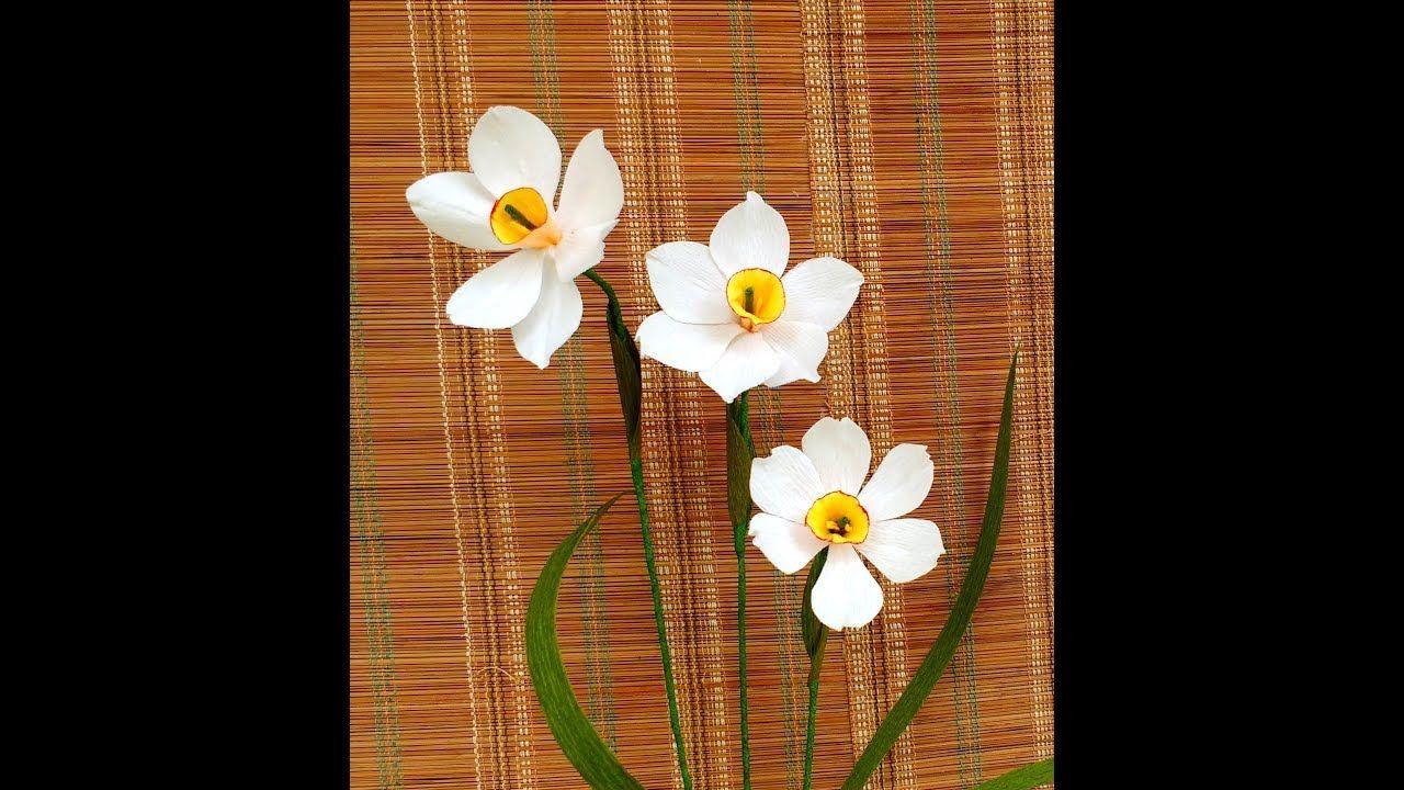 करप पपर फल नरगस paper flower narcissus