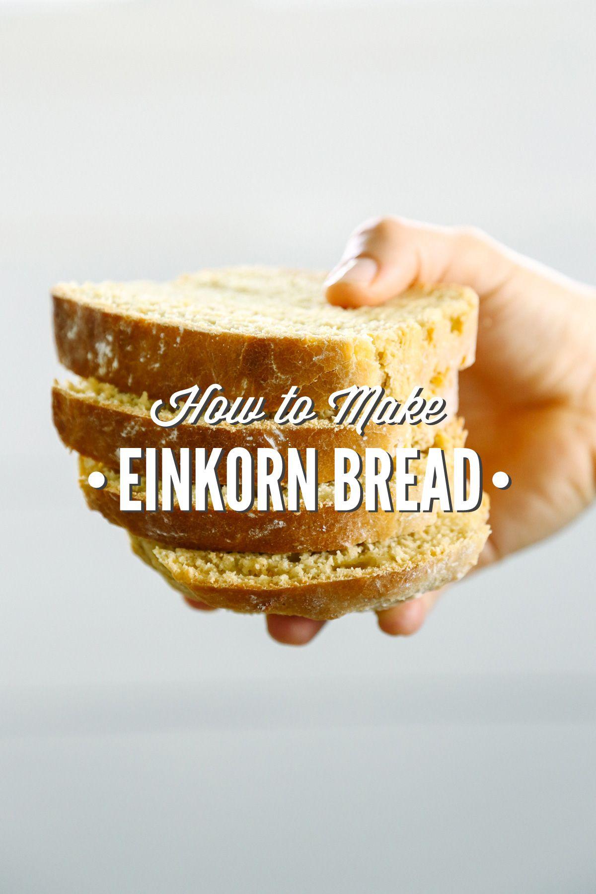 How to Make Einkorn Bread | Recipe | Einkorn bread, Real ...