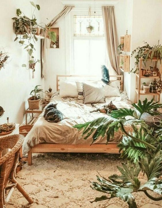 Plant Decor Bedroom - PDB Trending