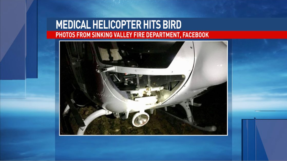 Blair County crews assist after medical helicopter hits bird