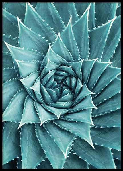 Fotokunst Mit Schwarz Weiss Fotografien Schwarz Weiss Bilder